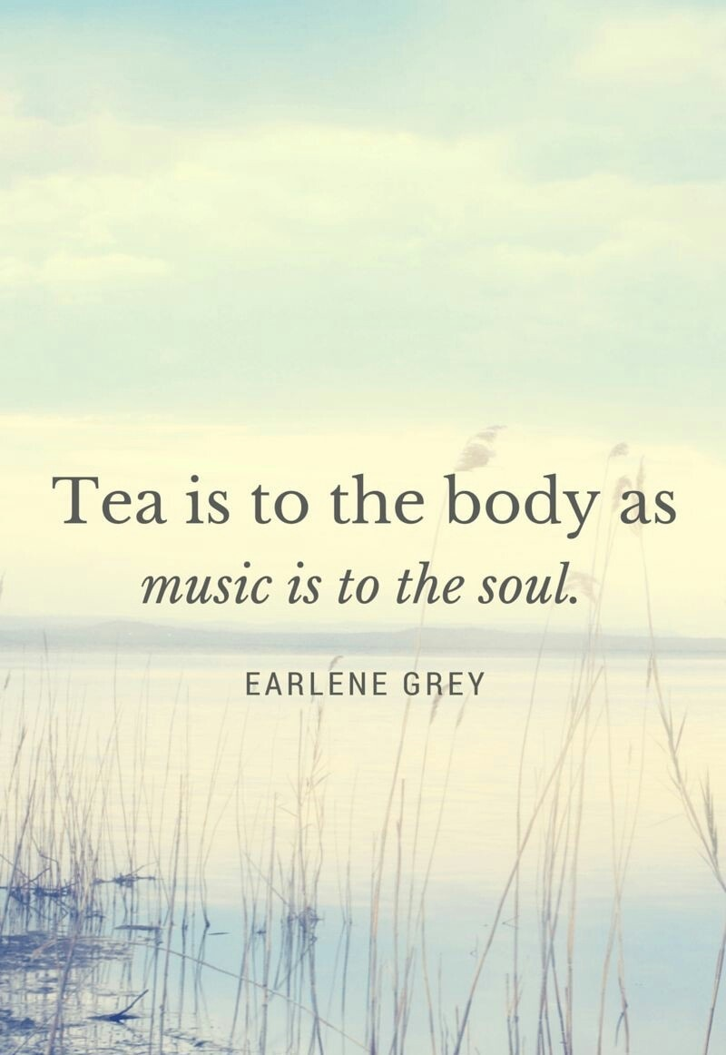 Tea is to the body as music is to the soul.